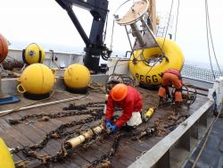 FOCI (Fisheries Oceanography Coordinated Investigations) buoy mooring operations off the NOAA Ship MILLER FREEMAN. Photo