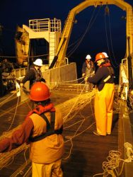 Deploying the gill nets. Photo