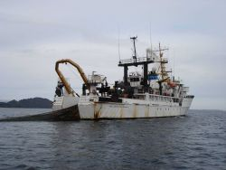 View of NOAA Ship MILLER FREEMAN with net in the water off west coast Photo