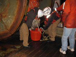 Emptying the cod end of a trawl into a small sorting basket. Photo