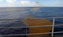 Sea water Photo