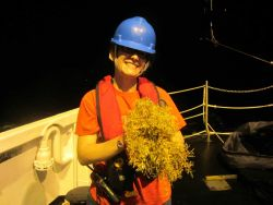 Emilisa Saunders prior to sorting sargassum weed for the many possible life forms that can be found associated with this floating algae. Photo