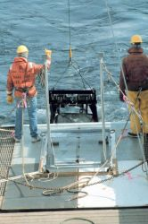 Deploying a large tow-net for studying plankton and small pelagic animals off the NOAA Ship MILLER FREEMAN. Photo