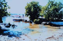 The boat ramp at Arecibo Outboard Club Photo