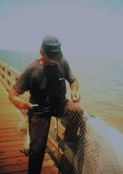 A mullet fisherman mending his net on the Gandy Bridge catwalk Image