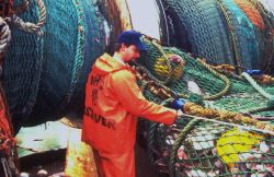 A National Marine Fisheries Service observer checks the dimensions of a net and its catch. Image