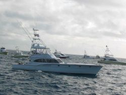 Sport fishing boats during tournament Photo