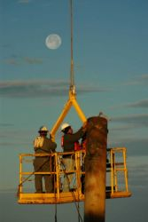 Oil field rough necks rigging a well for removal off the Louisiana coast. Photo