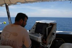 A member of the scientific party enterin marine mammal sighting data into a database while observing from the bridge wing of the NOAA Ship DAVID STARR Image