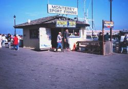 A bait and tackle shop at a charter fishing boat landing. Image