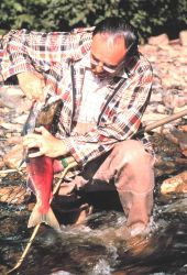 Angler removing sockeye salmon from net Photo