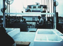 Anglers getting equipment ready aboard charter (CPFV) vessel Image