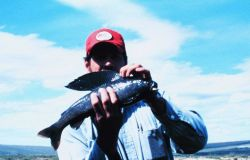 Angler with an Arctic grayling Image