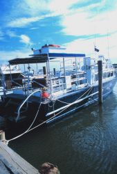 Commercial lobster boats operating out of Indian River Photo