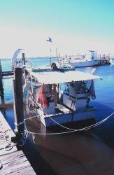 Stone crab boat at A Photo