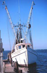 A shrimp trawler drying nets at Matlasha Pass Image
