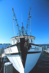 Bow of a shrimp trawler at Matlasha Pass Photo