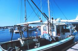Fishing vessel tied up at the Lobstermen's Co-op Photo