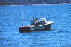 A lobster boat at Cousins Island Image