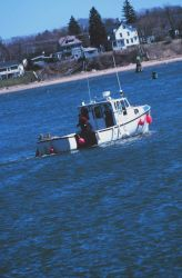 A lobster boat Image
