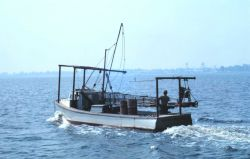 A Chesapeake Bay clam dredge boat. Image