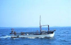 A Chesapeake Bay clam dredge boat underway. Image