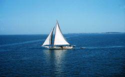 A Chesapeake Bay skipjack underway Image