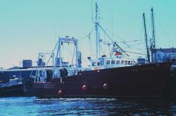 A stern trawler at the pier Image