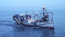 A clam dredge operating on Great South Bay Image