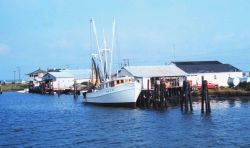 A shrimp boat at the pier Image