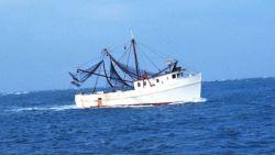 A shrimp boat underway Image