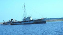 A menhaden mother vessel Image