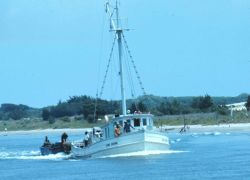 A small menhaden vessel with auxiliary boats being towed astern Image