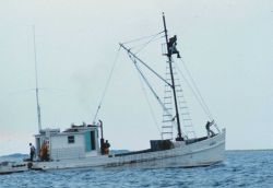 A menhaden fishing vessel with a lookout in the crow's nest looking for indications of schools of menhaden Image
