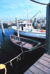 Part of the inshore lobster fleet Photo