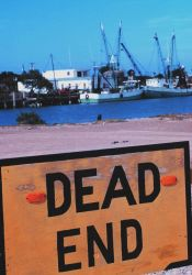 Dead end for some - opportunity for others Photo