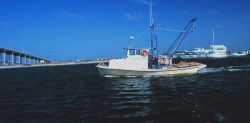 A small shrimp boat in the Intracoastal Waterway Image