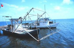 Shrimp boats tied up on the Padre island side of the JFK Causeway Photo