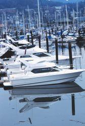 Recreational fishing vessels at Squalicum Harbor Photo
