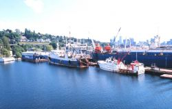 Stern trawlers that usually fish off Alaska and return to Seattle for maintenance and resupply Photo