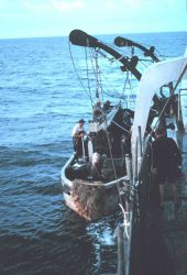Menhaden fishing - Putting over the purse seine boats early in the morning Photo