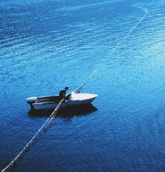 A native American gillnet fishing in the Columbia River Image