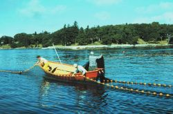 Setting a purse seine inside pocket while fishing for herring on the Maine coast Photo