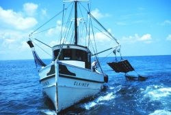 Double-rigged shrimp trawler hauling in the nets Photo