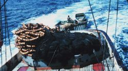Nets, purse seine boat, and wake are seen as looking aft from the stern of a tuna boat in the tropical Pacific Photo