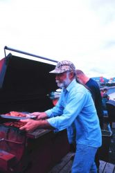 Grilling salmon at a community fish fry in support of the United Seiners Association Photo