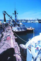 Tuna boat tied up at San Pedro maintaining gear Photo