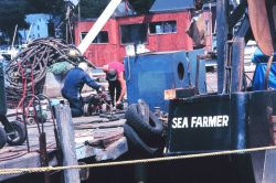 Fishermen maintaining gear on the dock Photo