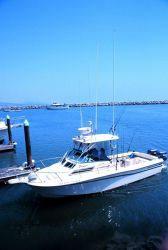 A small recreational fishing boat Image