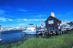 A full service recreational fishing shop providing boat rentals, bait, tackle, food, etc. Image